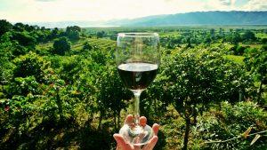 vin rouge, verre de vin, bouteille vin, cadeau vin, coffret vin, offrir vin